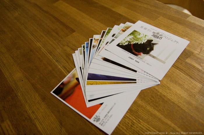 黒猫カレンダー・プロジェクト